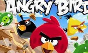 agry birds