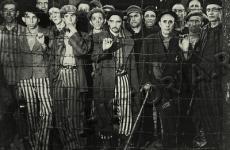 gulag15