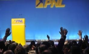 PNL delegatie