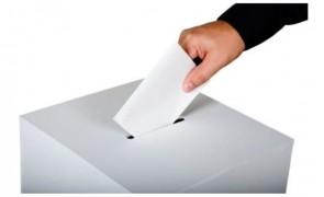 vot-alegeri-bacau