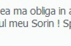 goia-3