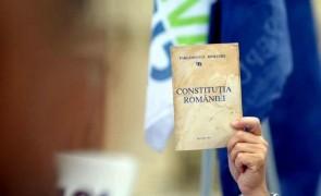 Constitutie