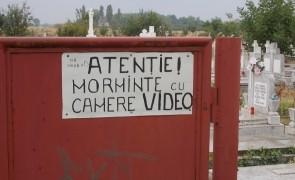 morminte