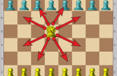 Nd5 - Centered Knight controls 8 critical squares on the Queen and King side