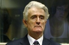Radovan-Karadzic