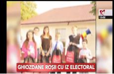 ghiozdan electoral