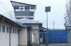 penitenciar colibasi