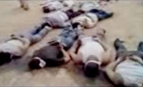 siria cadavre