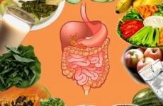 greseli alimente digestie