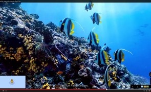 google ocean explore 2