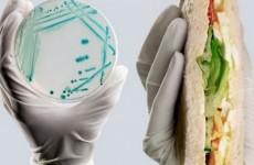 toxinfectie alimentara