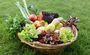 legume fructe proaspete