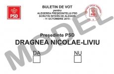 PSD alege (si) in sectia speciala