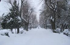 Parcul_Cismigiu_park_Bucharest_Bucuresti_Romania_winter_3