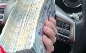 bani badea