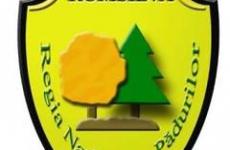 Romsilva-estimeaza-pentru-2011-venituri-totale-de-1-208-miliarde-lei