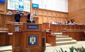 Raluca Turcan - Parlament