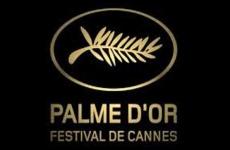 palme d or