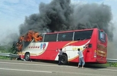autocar foc