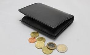diverse, bani, portofel