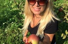 udrea la cules de mere
