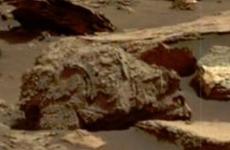 fosile Marte