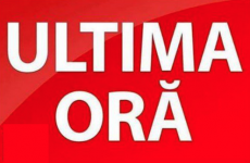 Ultima Ora breaking news