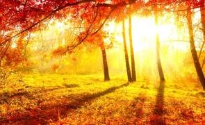 soare toamna