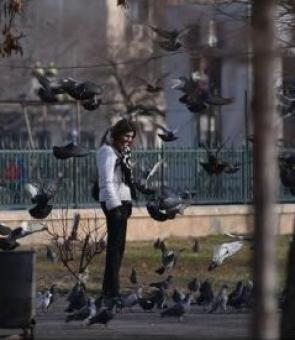 femeie, parc, porumbei
