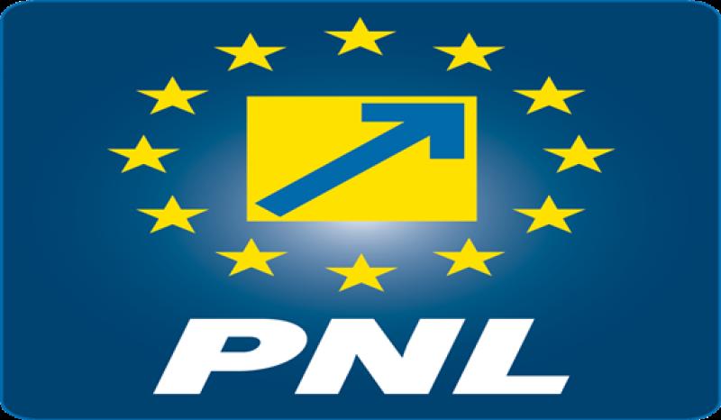 Imagini pentru PNL ,SIGLA ,POZE