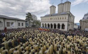 Florii Patriarhie
