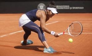 Inquam tenis Fed Cup