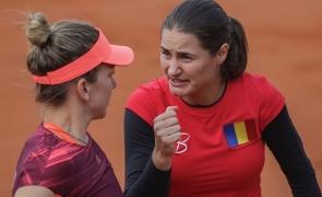 Inquam Simona Halep Monica Niculescu Fed Cup