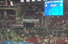 banner maghiari
