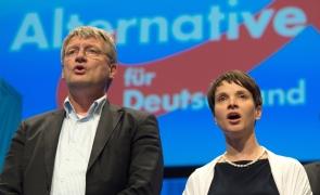 Jörg Meuthen, Frauke Petry, AfD