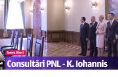 PNL consultari Cotroceni