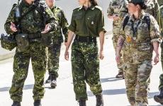 armata daneza