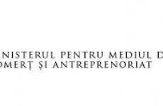 ministerul pentru mediul de afaceri