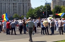protest instructori auto Guvern