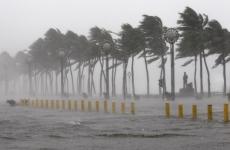 taifun, nesat