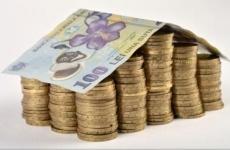 bani, lei, monede, bancnotă