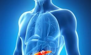 pancreas pancreatita