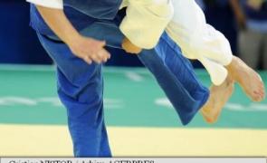 judo standard