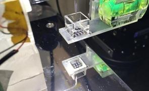 printare 3D celule