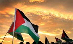 steag palestina