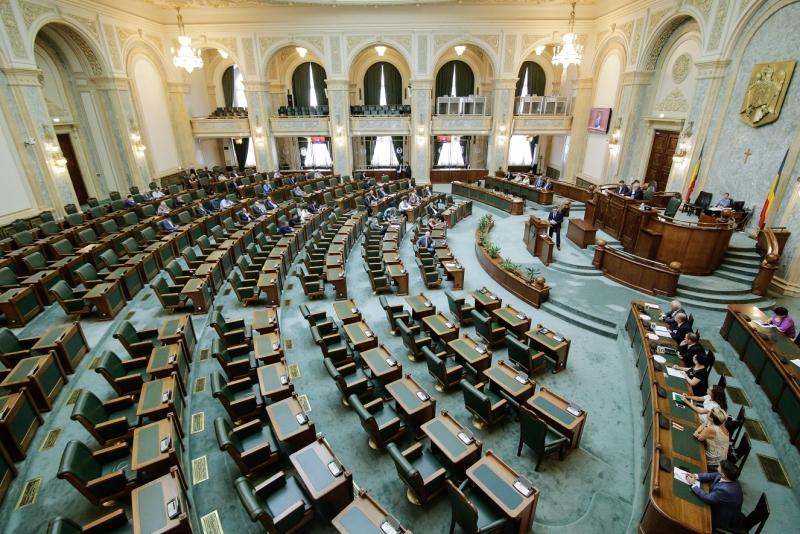 lista nominal cine sunt cei 29 de senatori care au votat
