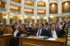 serban nicolae parlament