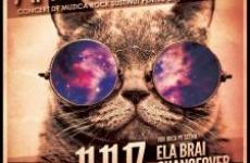 concert rock pisici