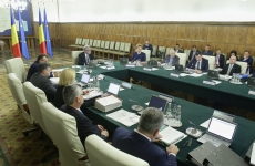 guvern sedinta