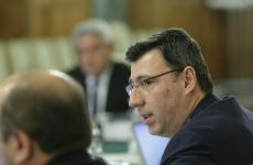 guvern Ionut Misa